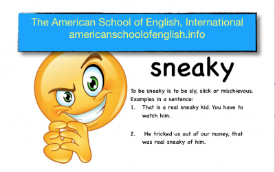 Your Phrase for Monday, July 19th, 2021 is …sneaky